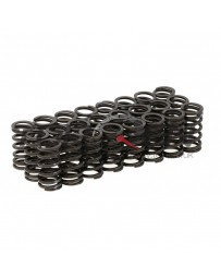 R32 Tomei Valve Springs Set Kit Type A
