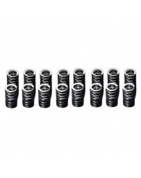 R34 HKS Valve Stem Seal Spring Set