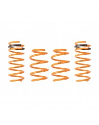 ARK Performance Hyundai Elantra 1.8L GT-F Springs (11-16)
