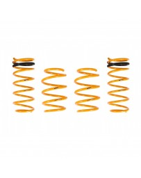 ARK Performance Hyundai Veloster 1.6L GT-F Lowering Springs (11-17)